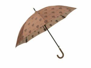 Fresk-paraplu-Lion